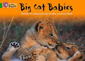 Big Cat Babies Workbook, Scott, Angela