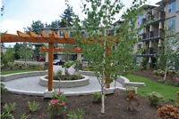 ** Brand New Condos from $129,900 **