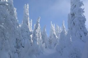 Studio to rent -all natural snow skiing -Saguenay QC