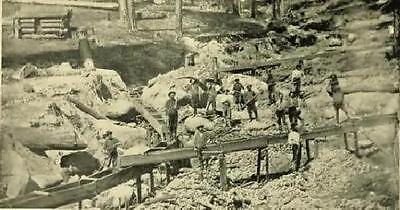 California Mines & Minerals Book on CD 1899