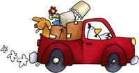 Hauling and moving w/ truck $50