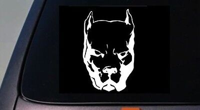 """AMERICAN BULLY *C556* decal LARGE SIZES 13/"""" sticker pit bull bully life"""