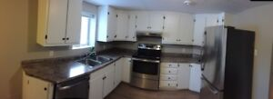One bedroom basement in east end - heated floors, h/l included