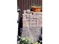 300 Brick pavers