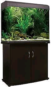 Wanted: Wanted: Aquastyle 980t Aquarium/Fish Tank