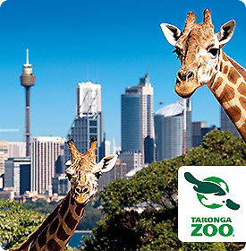 sydney taronga zoo ticket