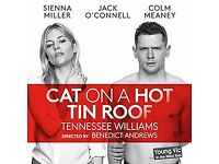 Cat on a Hot Tin Roof x1 Ticket
