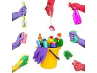 Cleaner in Southbourne - Private houses