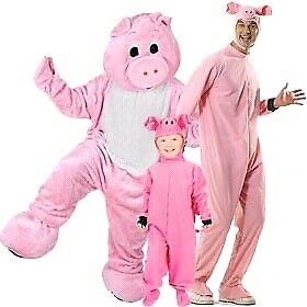LOOKING FOR A PIG COSTUME SIZE 10