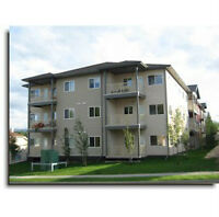 Hinton - 2 Bedroom Fully Furnished Available September 1, 2015