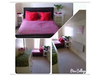 Large double bedroom in City Centre/Royal Mile EH1. Short or long term. Pls check all details below