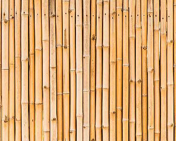Bambusrohre machen sich großartig als Wandverkleidung. (Copyright: Thinkstock/ über The Digitale)