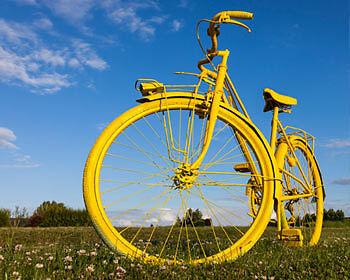 Unübersehbar im Feld und Straßenverkehr! (Copyright: Thinkstock/ über The Digitale)