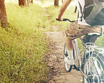 Fröhlich geht's über Stock und Stein – am besten auf dem Mountainbike. (Copyright: Thinkstock/ über The Digitale)