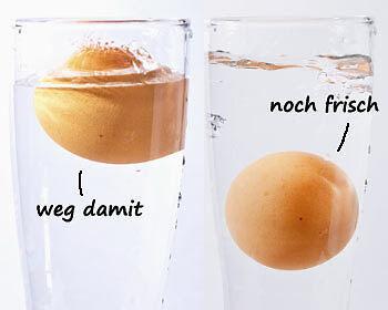 ... Ein Wassertest verschafft Klarheit! (Thinkstock/ Bearbeitung: The Digitale)