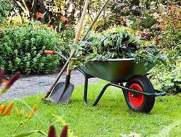 Affordable Gardening East Brisbane