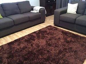 Large shaggy rug - brown Brighton East Bayside Area Preview