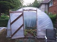 Polytunnel for sale.