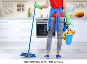 Pro European Cleaning Services