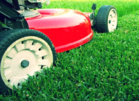Lawn mowing/General contracting