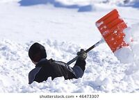 Do you need  help with your Snow Removal?