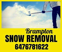 brampton area snow removal *on call today*
