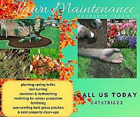 Garden makeovers & lawn care ! Serving the GTA