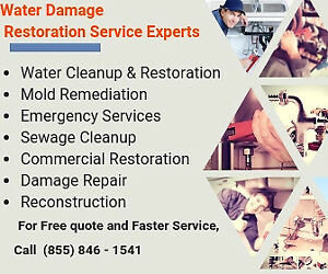 drain cleaning services--professional handyman plumber--best sew