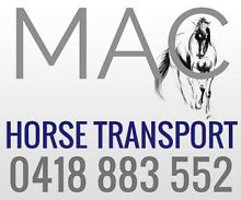 Driver wanted - MR licence - Experienced Horseperson Ormeau Gold Coast North Preview