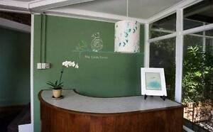Beautiful clinic room in Glebe for natural therapist Glebe Inner Sydney Preview