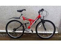 Mountain Bike - £90
