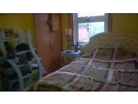 1 Sunny double room in lovely shared house, ottery st mary.