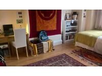 Beautiful room to sublet over Christmas period, East Finchley