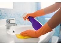 Lorraines £10 per hour domestic house cleaning and ironing services