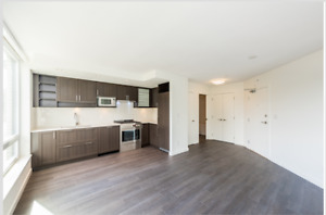 New 1 Bedroom Condo For July 15 Or Earlier   2min To Joyce Stn