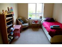Rent a single bedroom in Bournemouth town centre