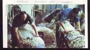 1983 -- MAZAMET DELAINAGE USINE SAINT SAUVEUR j491 - France - 1983 -- MAZAMET DELAINAGE USINE SAINT SAUVEUR il ne s'agit pas d'une carte postale , mais d'un beau document paru dans la rare découvrir la france en 1983 le document GARANTI D'EPOQUE est en tres bon état et présenté sur carton d'encadrement  - France