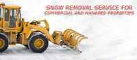 Snow Removal Special Across Winnipeg