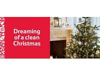 Mrs Sparkle.... Professional domestic and commercial cleaner. Are you dreaming of a clean Christmas?