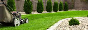 Tonte pelouse - L'assomption - Promotion INCROYABLE