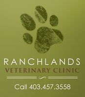 Part-Time Veterinarian Wanted