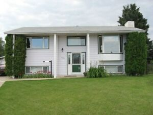 BEAUTIFULLY RENOVATED BILEVEL WITH A LARGE YARD IN MORINVILLE