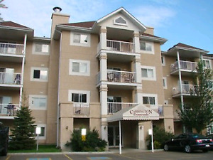 Beautiful 2 Bed 2 Bath Condo in West Edmonton