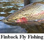 Finback Fly Fishing