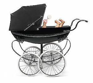 Stroller and car seat professional cleaning service .
