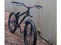 Specialized P1 2012