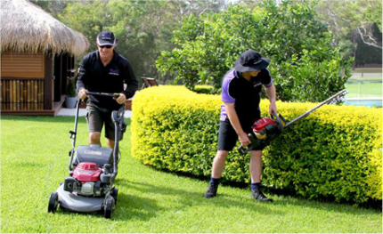 Landscaping gardening mowing turf  turfing property maintenance