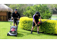 Lawn and Paddock Mowing and Garden Maintenance Service for Stratford Warwick and Surrounding Areas
