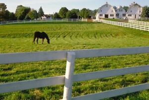 LOOKING FOR A ROOM ON A FARM TO RENT!