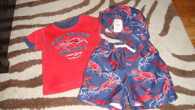 Baby Lobster Hat (BABY GAP 6-12 LOBSTER SWIM TRUNKS SHIRT HAT LOT)